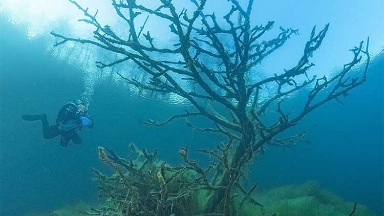 El lago sin fondo
