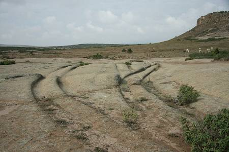 Hallan huellas de vehículos en rocas de 12 millones de años
