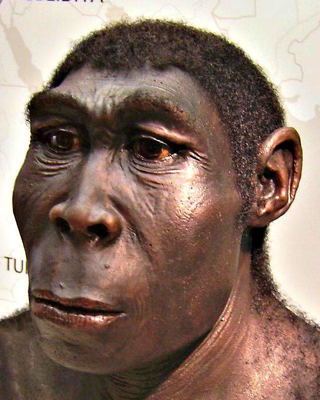 Los Anunnaki y la historia prohibida del origen de la Humanidad