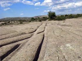 Vehículos de ruedas hace 5,3 millones de años