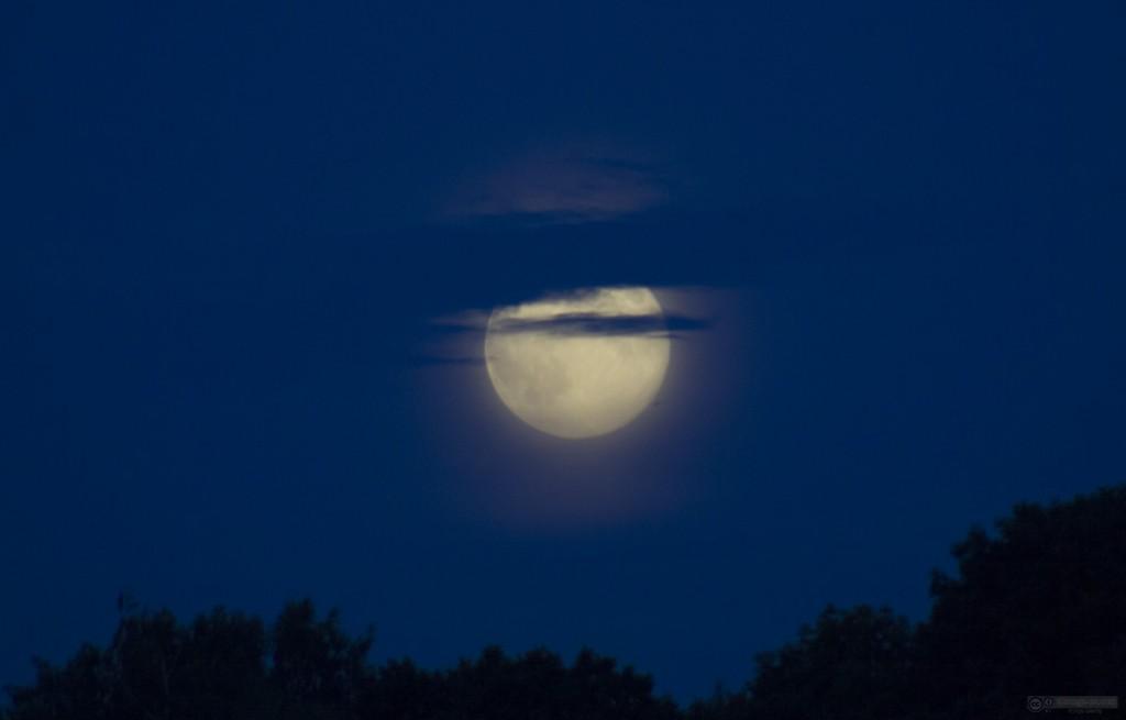 ¿Afecta la luna llena la tasa de nacimientos, de muertes, de accidentes o de algún comportamiento humano?