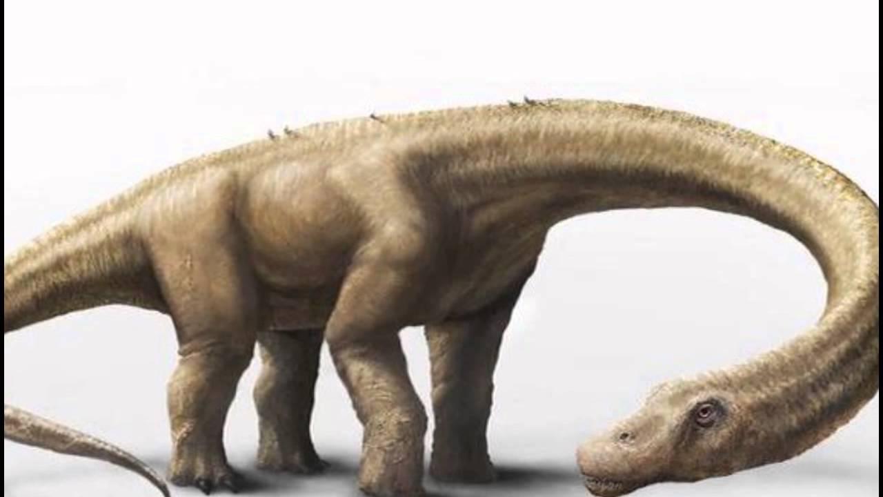 El Behemot, Dinosaurio En La Biblia.