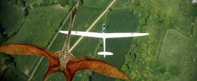 Evidencias de que los pterosaurios consiguieron sobrevivir hasta nuestros días