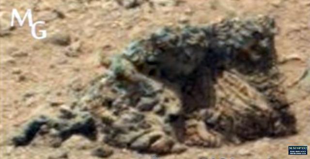 Marte: ¿Encontrado los cuerpos fosilizados de dos marcianos abrazados hace millones de años?