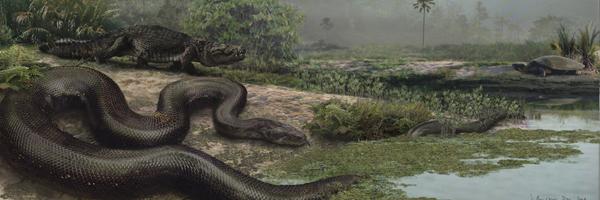Titanoboa , La Serpiente Mas Grande De La Historia.