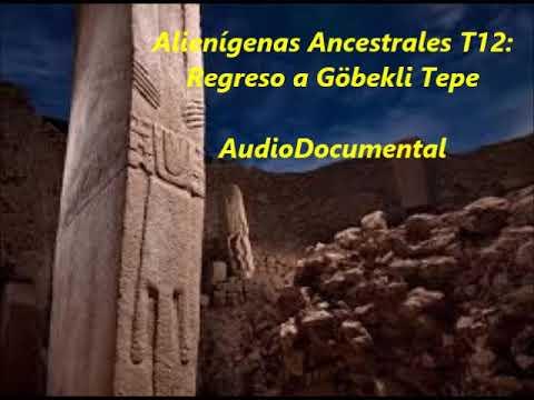 Alienígenas Ancestrales REGRESO A GÖBEKLI TEPE para escuchar mientras haces otras cosas
