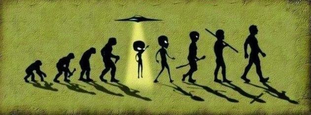 Científicos concluyen que no evolucionamos como otros seres en la tierra