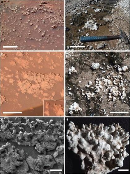 ¿Descubrió el rover Spirit señales de vida pasada en Marte?