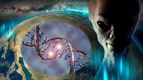 Los humanos y los extraterrestres híbridos reciben actualizaciones de ADN directamente de las razas «EXTRATERRESTRES»