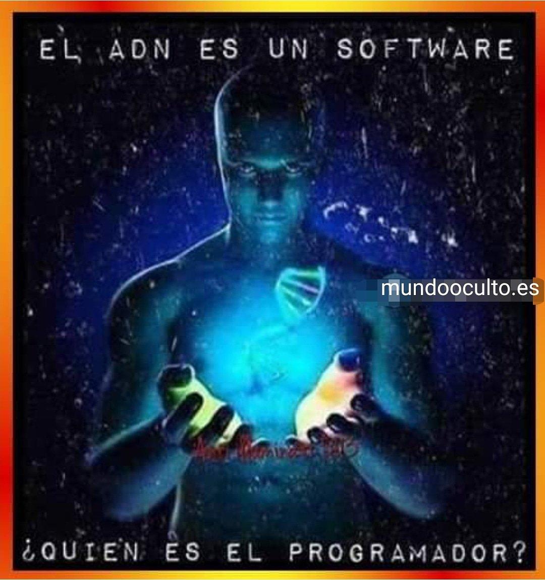 El ADN es un software, quién es el programador?