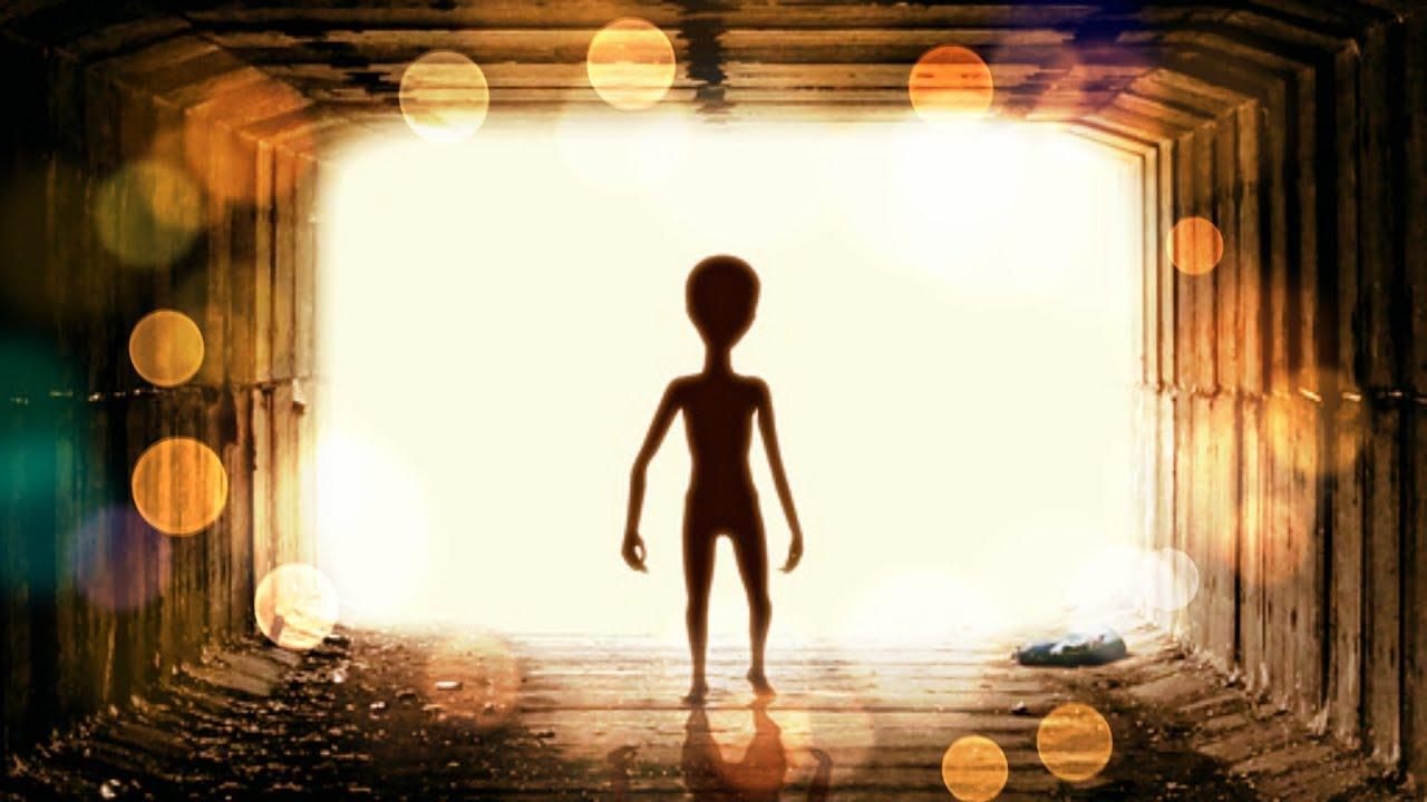 Puso Una Mosquitera Contra Extraterrestres (1/2)