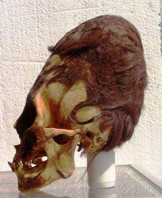 Descubierta en Perú cabeza momificada de un recién nacido con una asombrosa elongación craneal