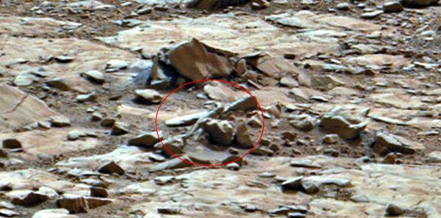 Alien parecido a un reptil siendo visto en Curiosity Imagen de Mars Rover