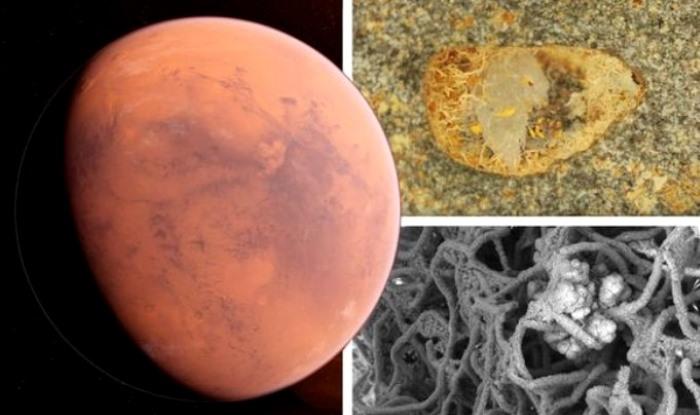 El científico de la NASA dijo: «junto con la ESA anunciaremos el descubrimiento de vida extraterrestre en Marte en los próximos meses»
