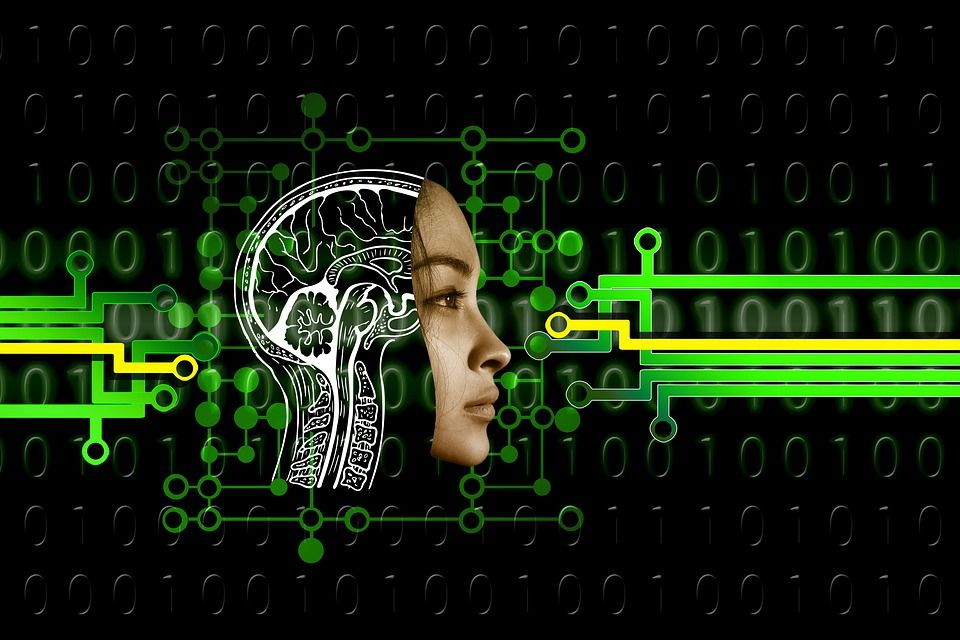 Desarrollan mini cerebros y se los ponen a robots