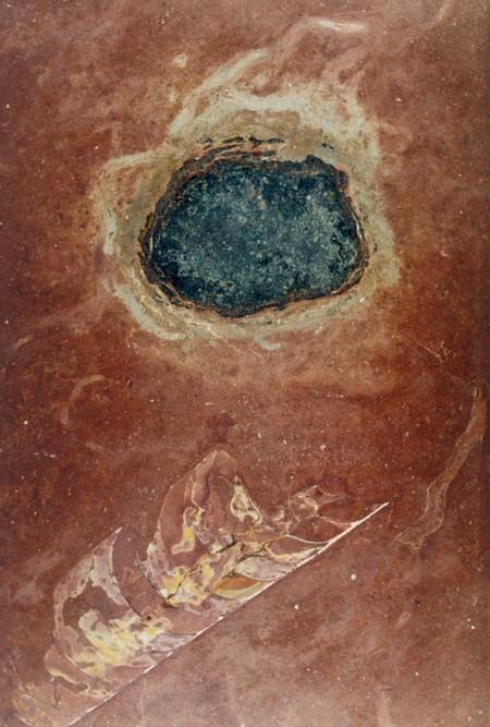 Polvo de asteroides puede haber provocado nueva vida en la Tierra hace 470 millones de años