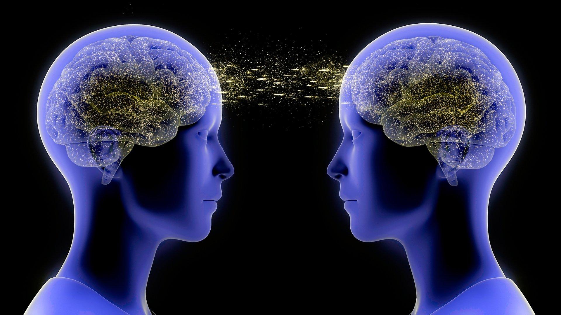 Descubren conexión telepática en los cerebros humanos
