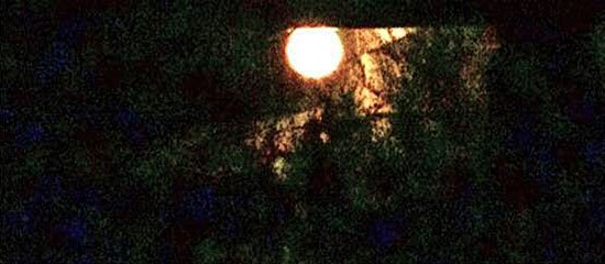 Nuestros Progenitores los 'Pitaram', Orbitan La Luna