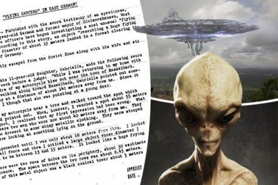 Identifican 82 especies de extraterrestres en la tierra
