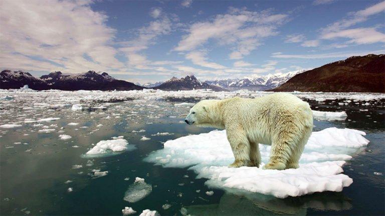 """Los científicos han anunciado un plan para """"recongelar"""" el Ártico- Y es increíble"""