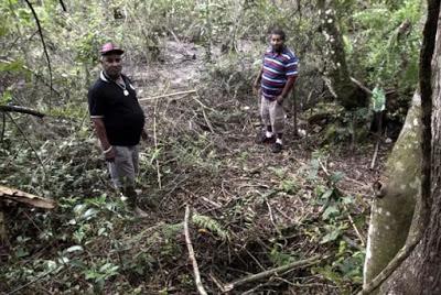 Brasil: OVNI intermitente dejó extrañas marcas de aterrizaje y apagó los motores de barcos cercanos en un encuentro aterrador con dos pescadores