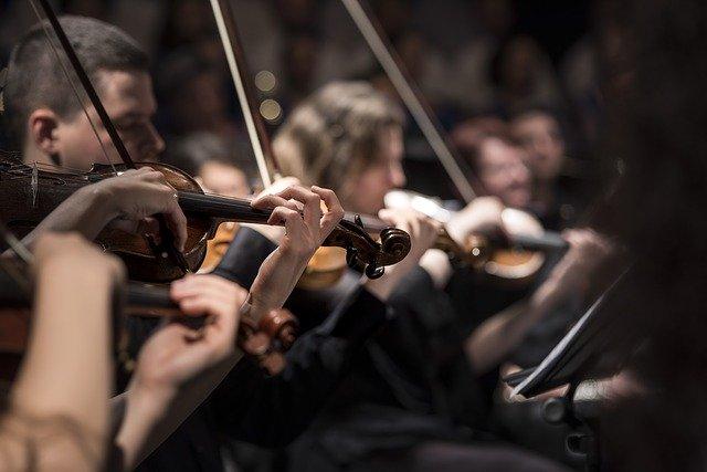 La música podría ser un lenguaje universal que todos entienden, revela investigación