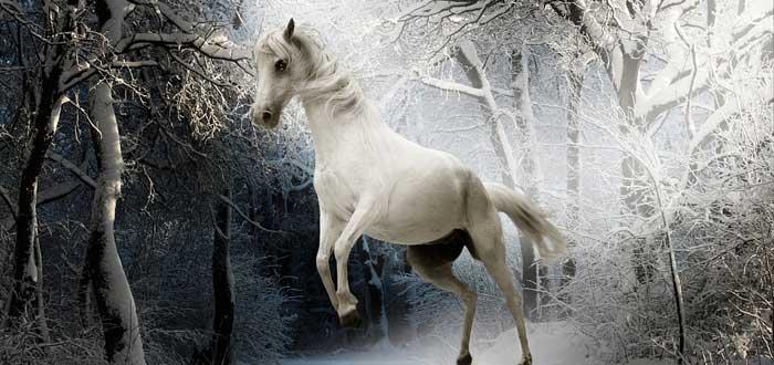 Animales que según la tradición guían a las almas al más allá
