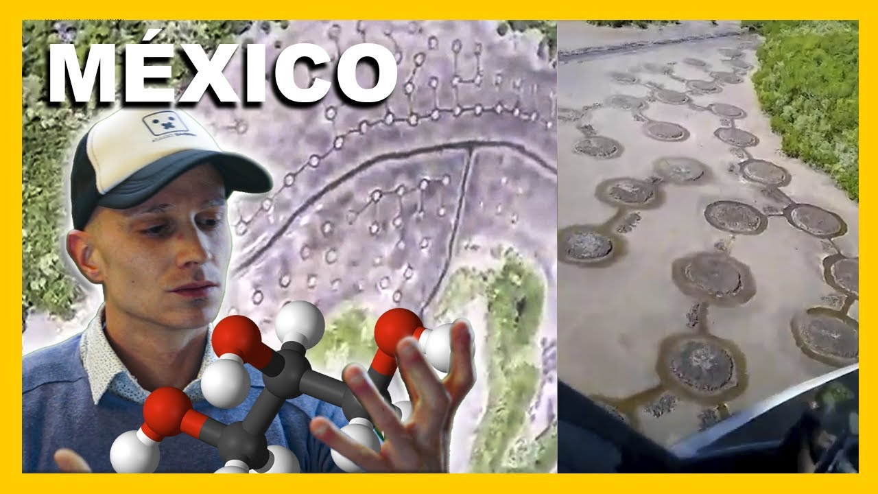 APARECEN MISTERIOSOS CÍRCULOS EN BAHAMITA ISLA DEL CARMEN MÉXICO