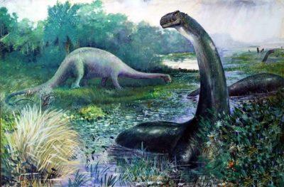 ¿Dinosaurios en nuestra época? Leyendas y avistamientos en todo el mundo