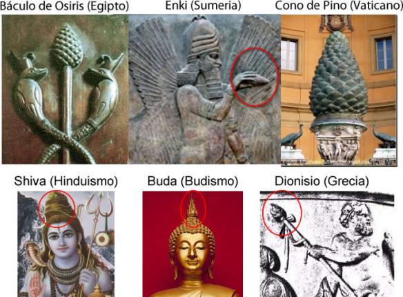 La Glándula Pineal y el cono de pino: ¿parte de una sabiduría extraterrestre?