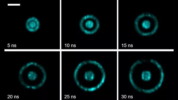 Los científicos han creado la primera cámara capaz de capturar «lo invisible»