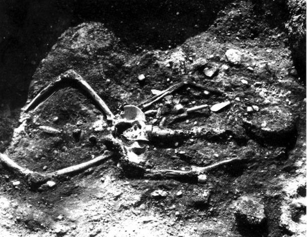 ¿Se destruyeron miles Esqueletos de Gigantes en el 1900?