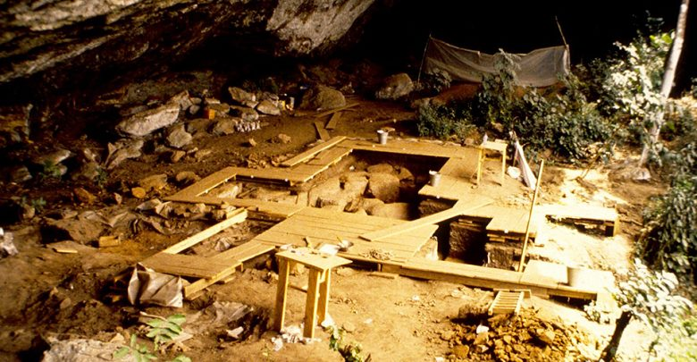 Se encontró linaje fantasma: cuarto linaje humano ancestral previamente desconocido