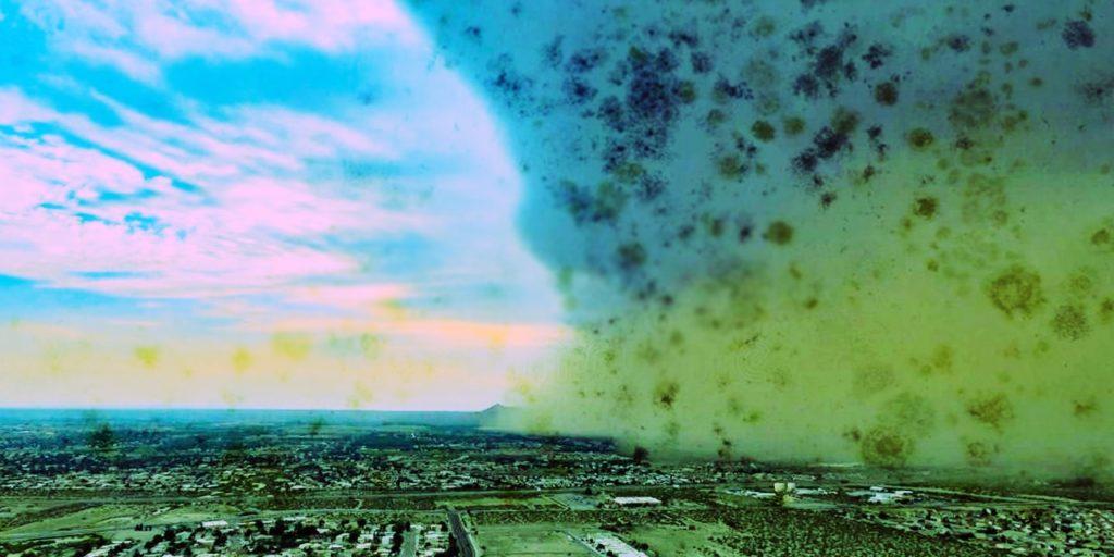 Se están liberando nanopartículas de esporas de hongos a la atmósfera?