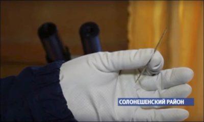 ¿Quién confeccionó esta precisa e impresionante aguja de hace más de 50.000 años?