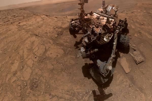 Científico asegura que logró captar insectos en Marte a través de fotos captadas por el Curiosity