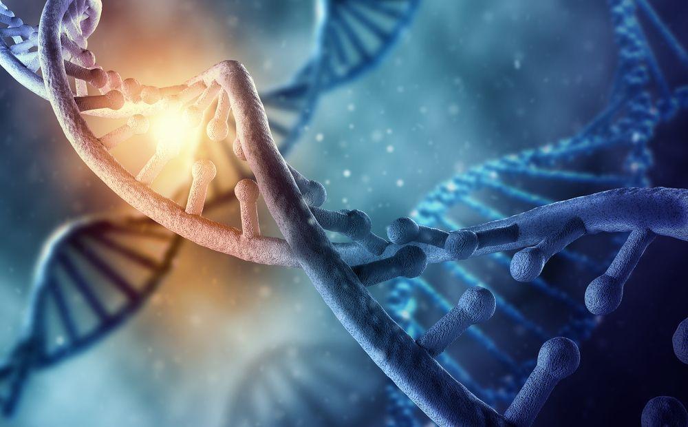 Dios es ingeniero genético