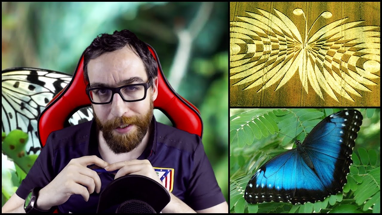 Una Mariposa Extraterrestre Como Regalo A La Humanidad
