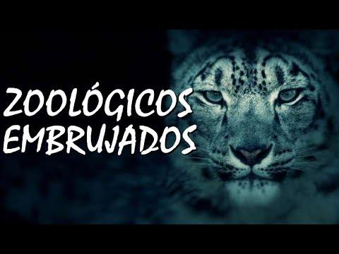 Zoológicos Embrujados.