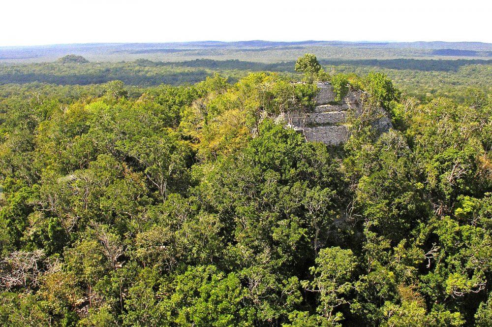 El complejo de la pirámide de La Danta que sobresale de la selva. Dennis Jarvis de Halifax, Canadá [CC BY-SA 2.0.
