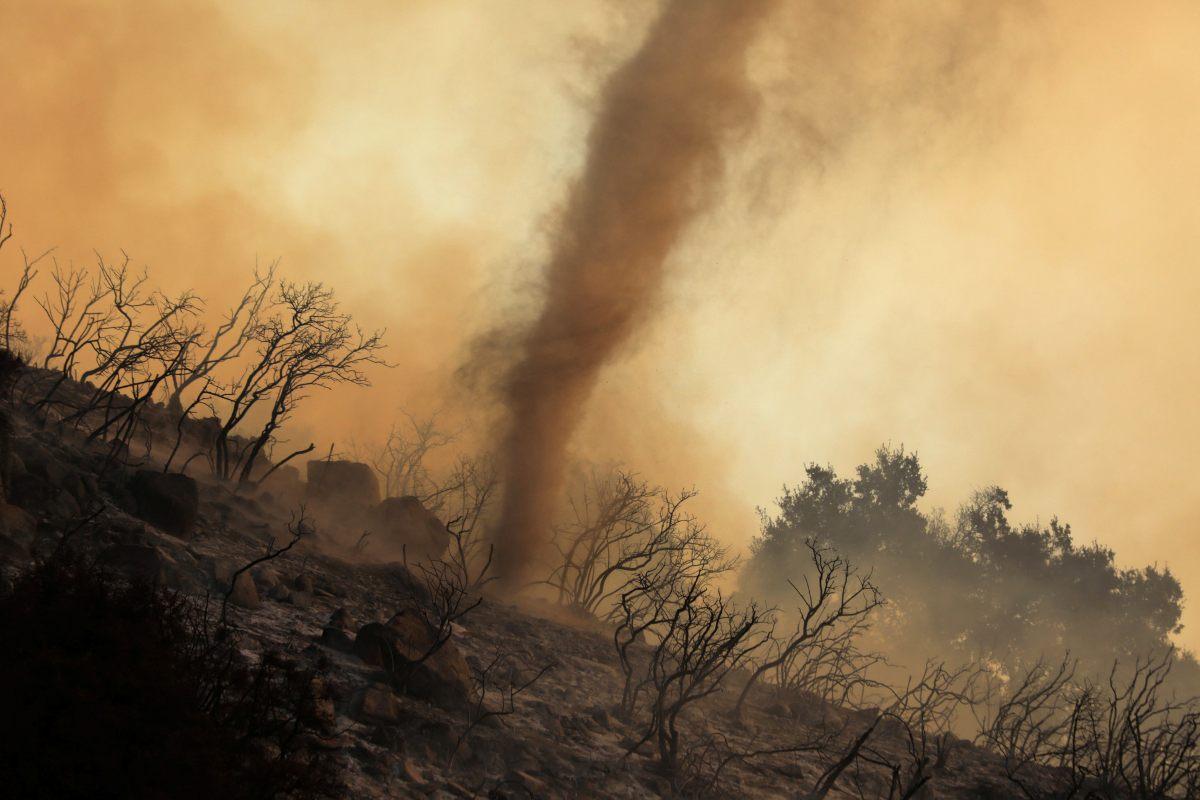 Científico australiano vaticina un desastre en la Tierra peor que la extinción de los dinosaurios