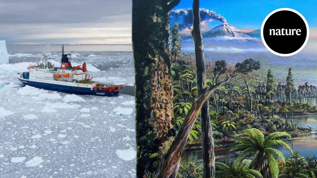 Científicos desentierran pruebas de una ancestral selva en la Antártida