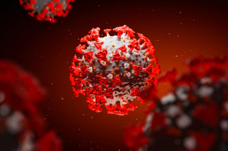 """El virus que circule dentro de tres meses será mucho más benigno que el que circula ahora"""", afirmó Luis Enjuanes, virólogo y director del laboratorio de coronavirus del CNB-CSIC."""