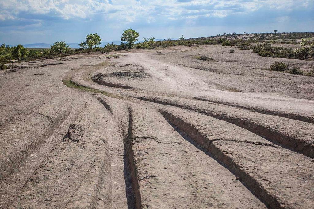 Hallan huellas de vehículos gigantescos de «12 millones de años de antigüedad»