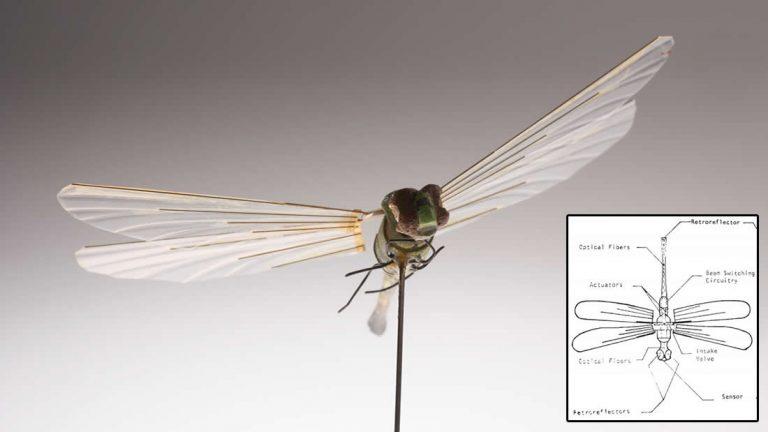 La CIA poseía «drones insecto» en la década de 1970. Por lo tanto, ¿qué tienen hoy?