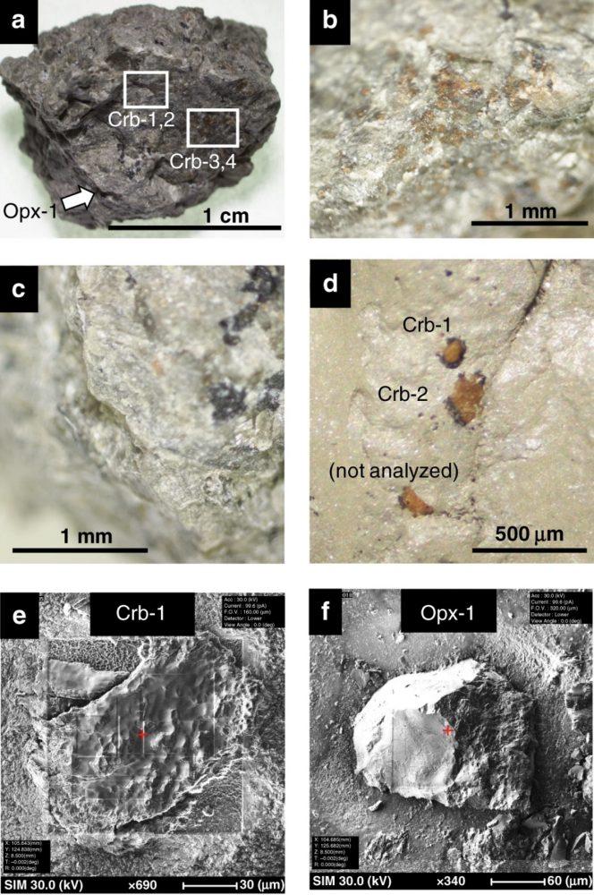 Imágenes de electrones ópticos y secundarios de carbonatos de ALH. Crédito de la imagen: Journal Nature.