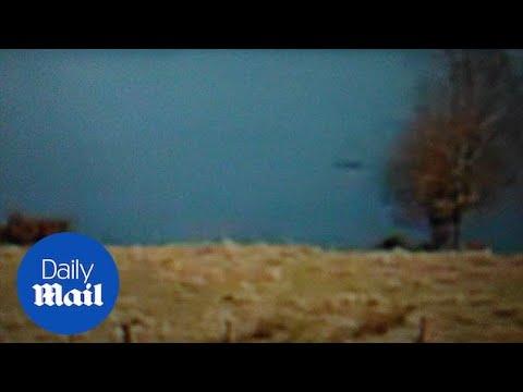 Un video de la segunda aparición «confirmada» de Nessie apareció en internet