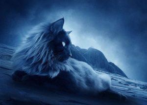 La Vida Espiritual De Los Animales Y Por Qué Deberían Ser Respetados