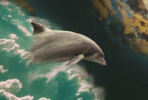 Nueva Teoría: Los Delfines Solían Parecerse A Los Humanos Y Vivían En La Atlántida