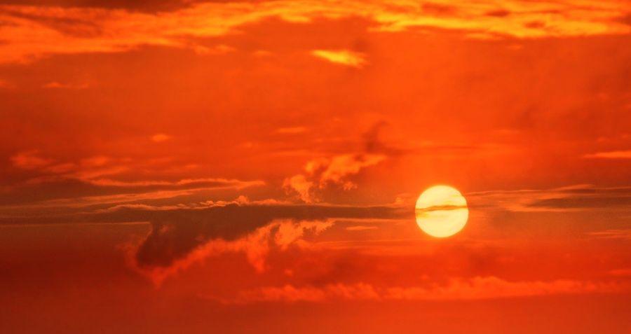 Olas de calor potencialmente MORTALES llegarán demasiado anteriormente de lo que pensábamos, alertan investigaciones